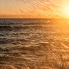 Sea Spray Sunrise
