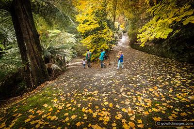 A young family explores the Pirianda Garden in the Dandenongs