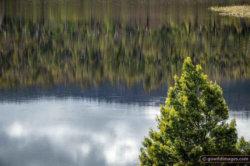 Toorourrong Reflections