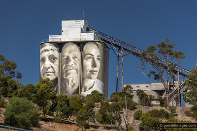 Geelong Silo Art