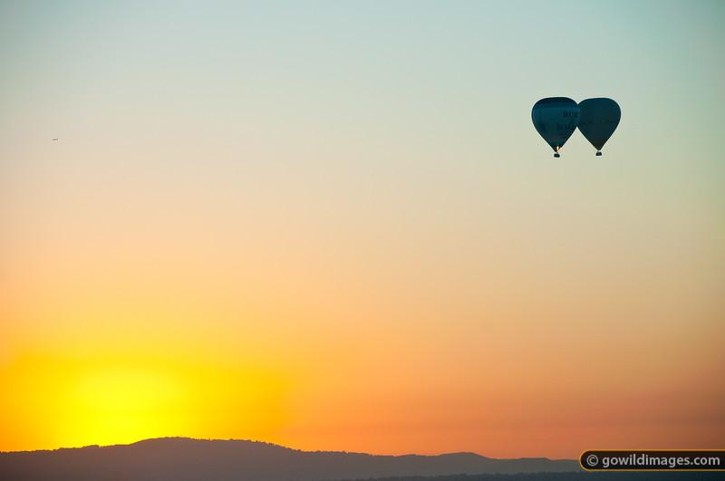 Hot air balloons at sunrise over the eastern suburbs near Mt Dandenong