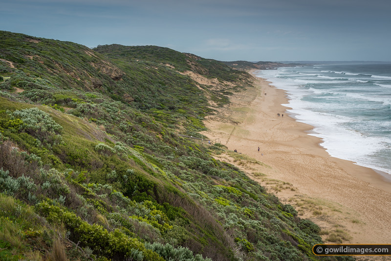 Pt Nepean NP near Portsea Back Beach