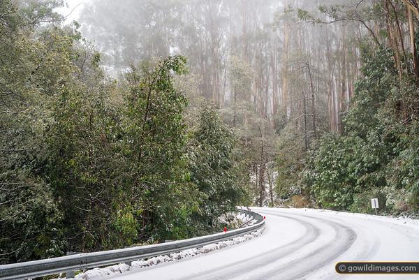 Donna Buang Road