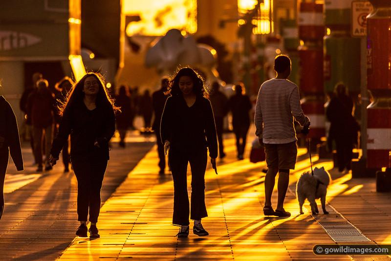 Golden Walk