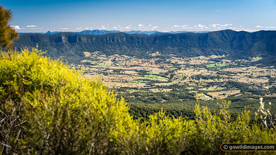 Mount Warning views