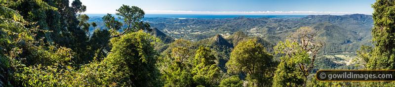 Mount Warning panorama