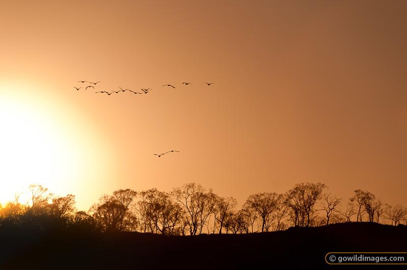 Sunset near Tantangara reservoir