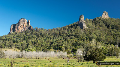 Nimbin Rocks: The Thimble, Cathedral & Needle