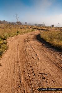 near Tantangara reservoir