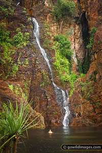 Wangi falls at the beginning of the wet season. Litchfield NP, NT.