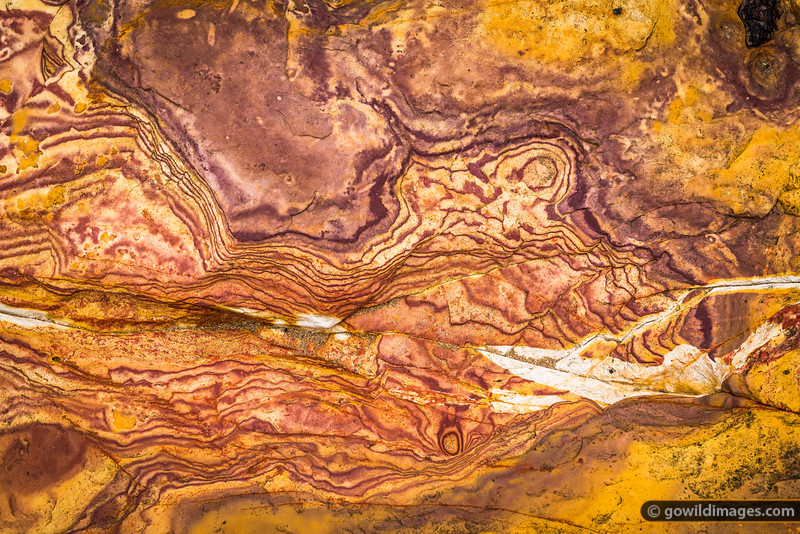 Sandstone textures, near East Point, Darwin, NT