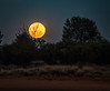 Moonrise at the Claypans