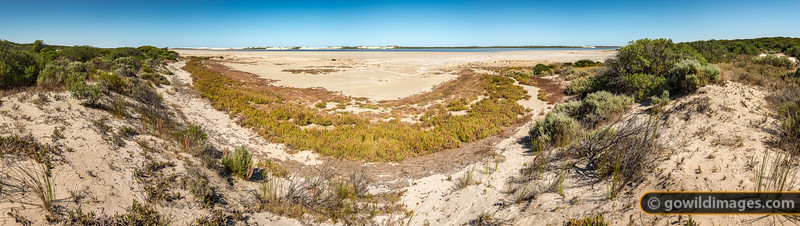 Coorong Drought