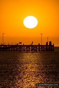 Cape Jaffa Sunset