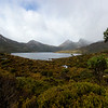 The Tasmanian Wilderness