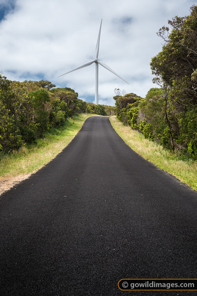 Wind turbine on the coast, along Norman Wade Scenic Drive, Cape Nelson