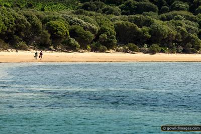 Cape Woolamai Back Beach