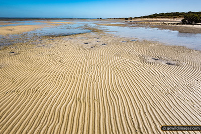 Sand patterns at low tide amongst the mangroves, French Island NP