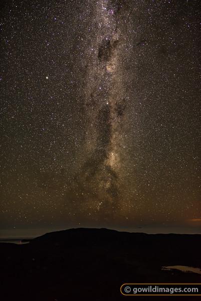Stellar Pillar