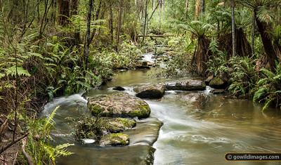 Sheoak Creek