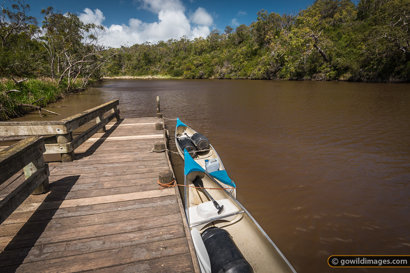 Up the Glenelg River, with a paddle! Lower Glenelg River NP