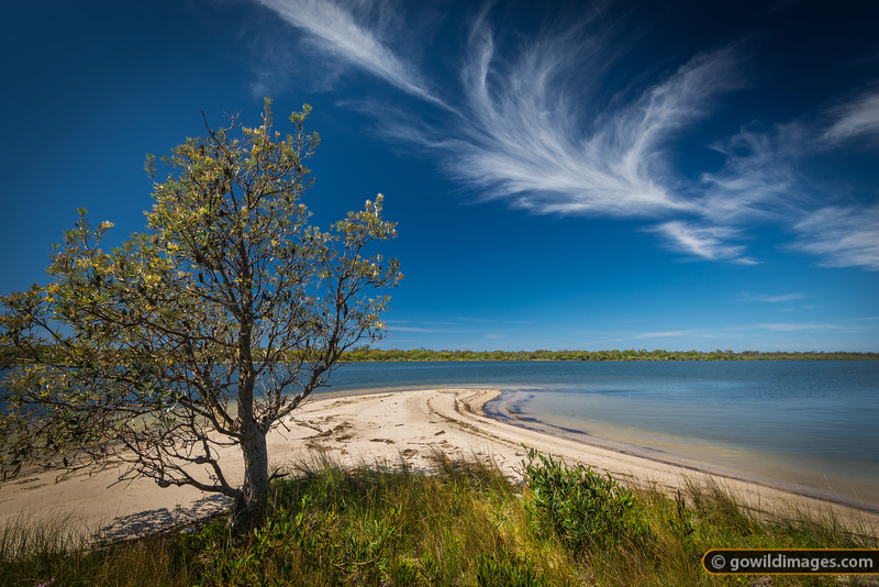 Trapper Point, Lake Reeve. Across the water is Rotamah Island, The Lakes NP.
