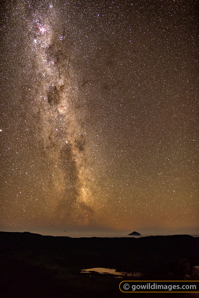 Southern Starlight