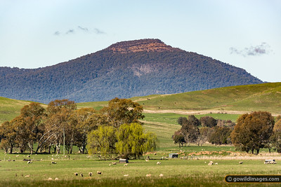 Timbertop Tablelands