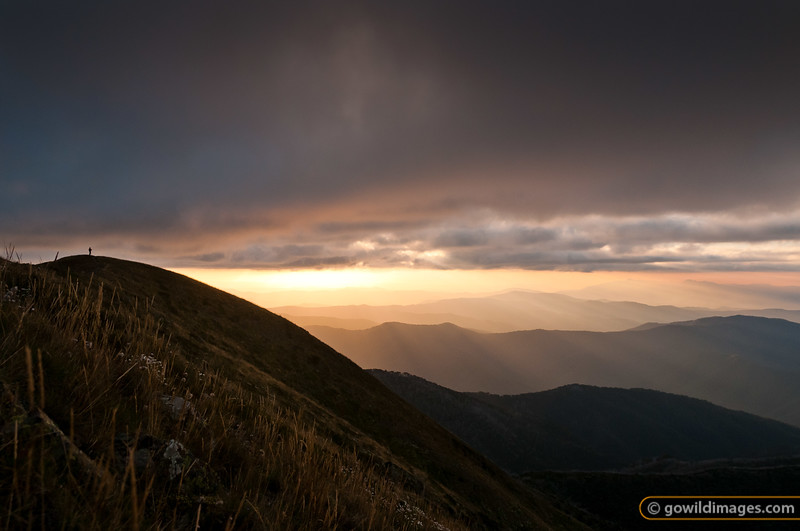 Lone hiker/photographer with tripod on the summit of Mt Feathertop at sunset