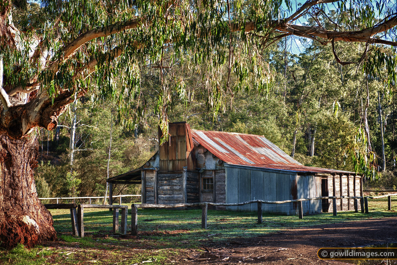 Fry's Hut on the banks of the Howqua River, as featured in the Man from Snowy River films.