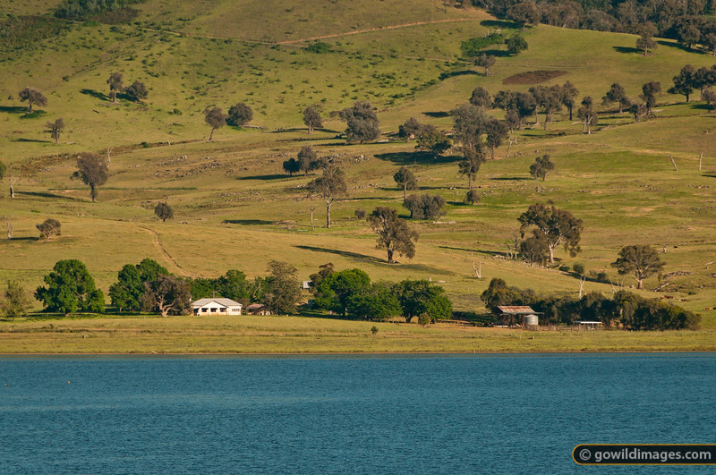 Farmhouse on the bank of the Murray River, near Walwa