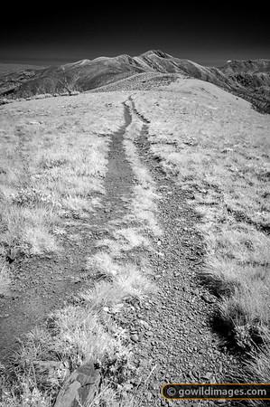 Razorback Spur Track
