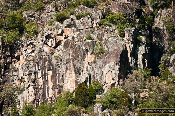 Granite cliffs above Bluff Creek, Burrowa-Pine NP