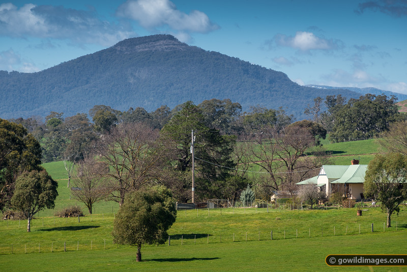 Mt Timbertop