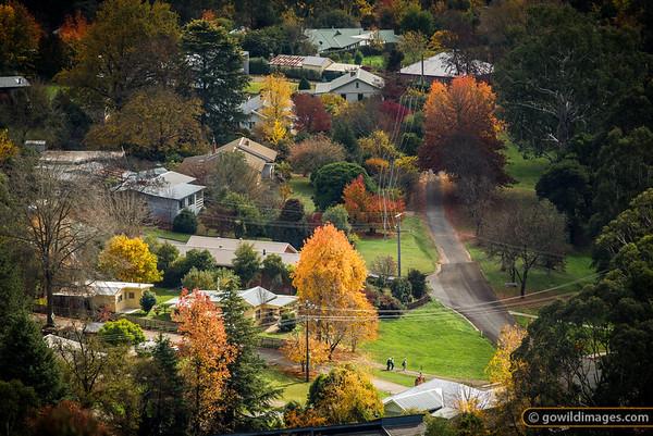 Autumn scene in Bright
