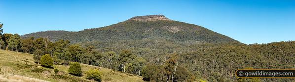 Timbertop Valley