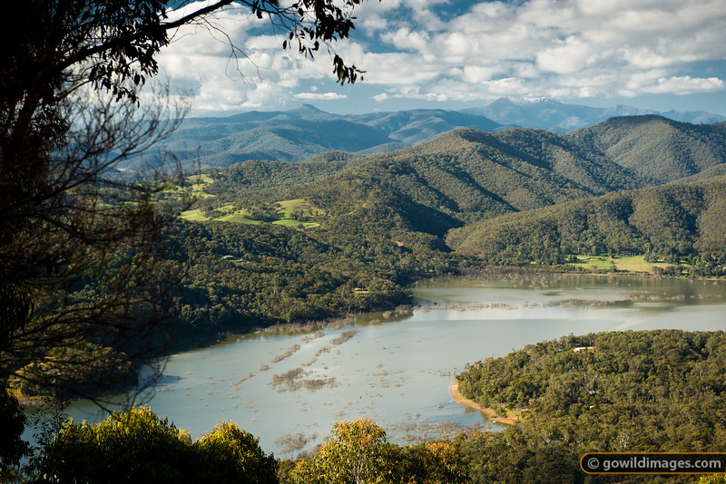 Eildon NP and the Goulburn Arm of Lake Eildon, near Jamieson (out of sight, to the right). Mt Timbertop is the peak just left of centre in the distance, with Mt Buller under snow and cloud to the right.. To the right of the main peak you can see the rocky spur and peak of Little Buller.