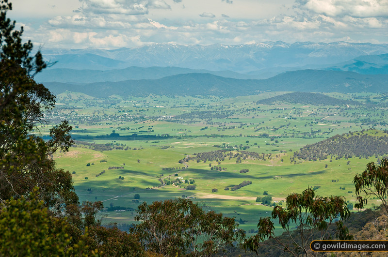 View over Corryong from Ross Lookout, Burrowa-Pine NP, with the Main Range and Mt Kosciuszko behind