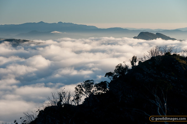 Sunrise looking over Devil's Staircase toward Mt Buffalo with Terrible Hollow under cloud
