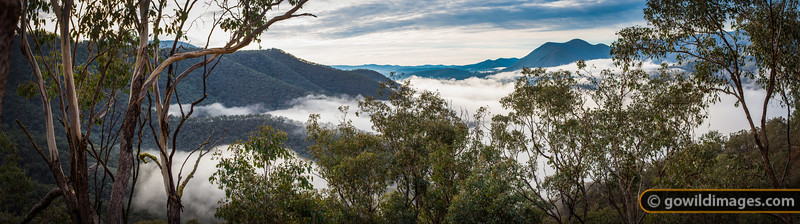 """Morning mist rolls through the valleys of Snowy River NP. [Can be printed up to 1.2m (4"""") wide]"""