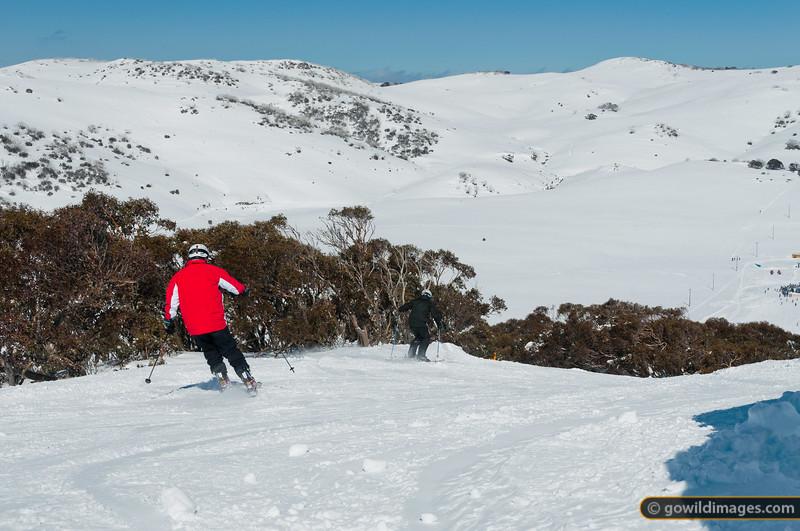 Falls Ck Spring skiing