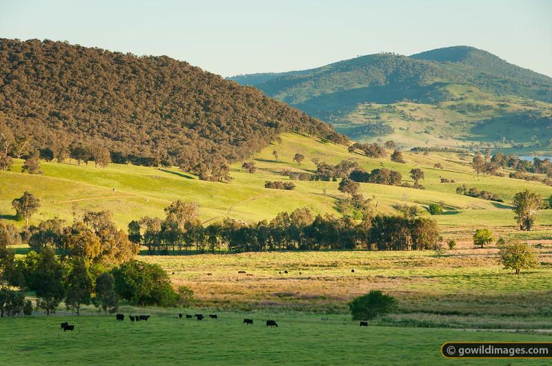 Rural view along Granya Road, near Mt Granya NP