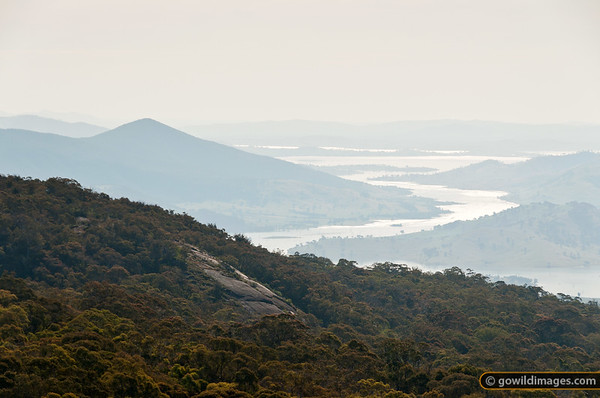 View from Mt Lawson summit, looking W over the Murray River and Mt Granya SP