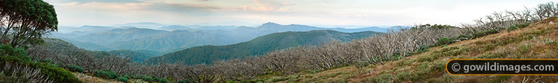 Mt Cobbler from Mt Stirling. 100MP image, can be printed over 2m length