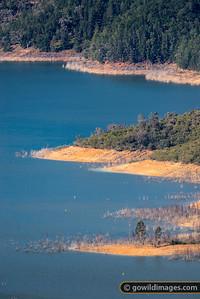 Lake Half Full