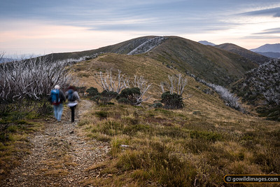A couple head out for a day walk to Mt Feathertop
