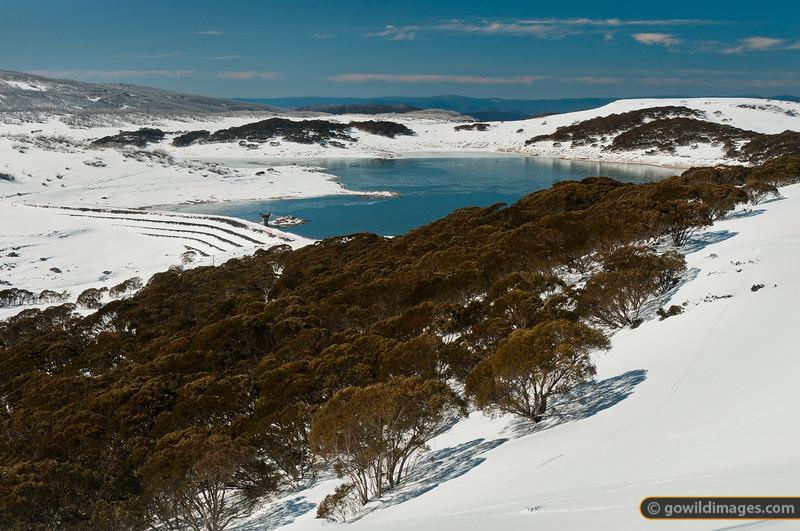 Rocky Valley Reservoir, Falls Ck.