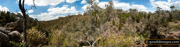 Sheep Station Creek, near Woolshed falls, Mt Pilot NP. 130 megapixel image - can be printed up to 1.1 metres wide (43 inches) at full photo quality