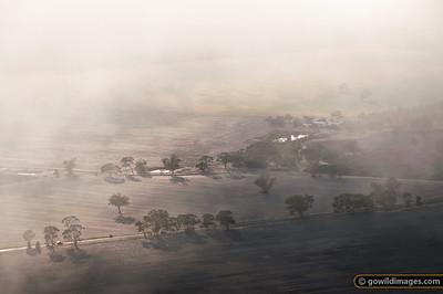 Misty Plains
