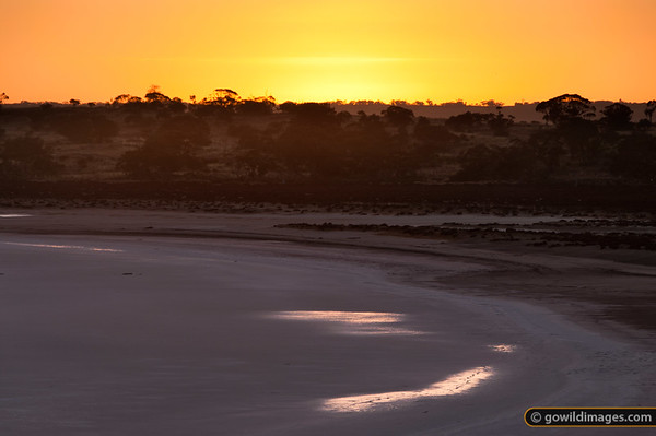 Sunrise on Lake Crosby, one of the pink salt lakes in Murray-Sunset NP,